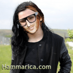 David Guetta Skrillex Meme